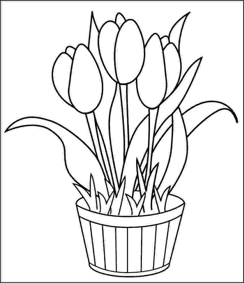 tulips to color tulip coloring pages print color craft color tulips to