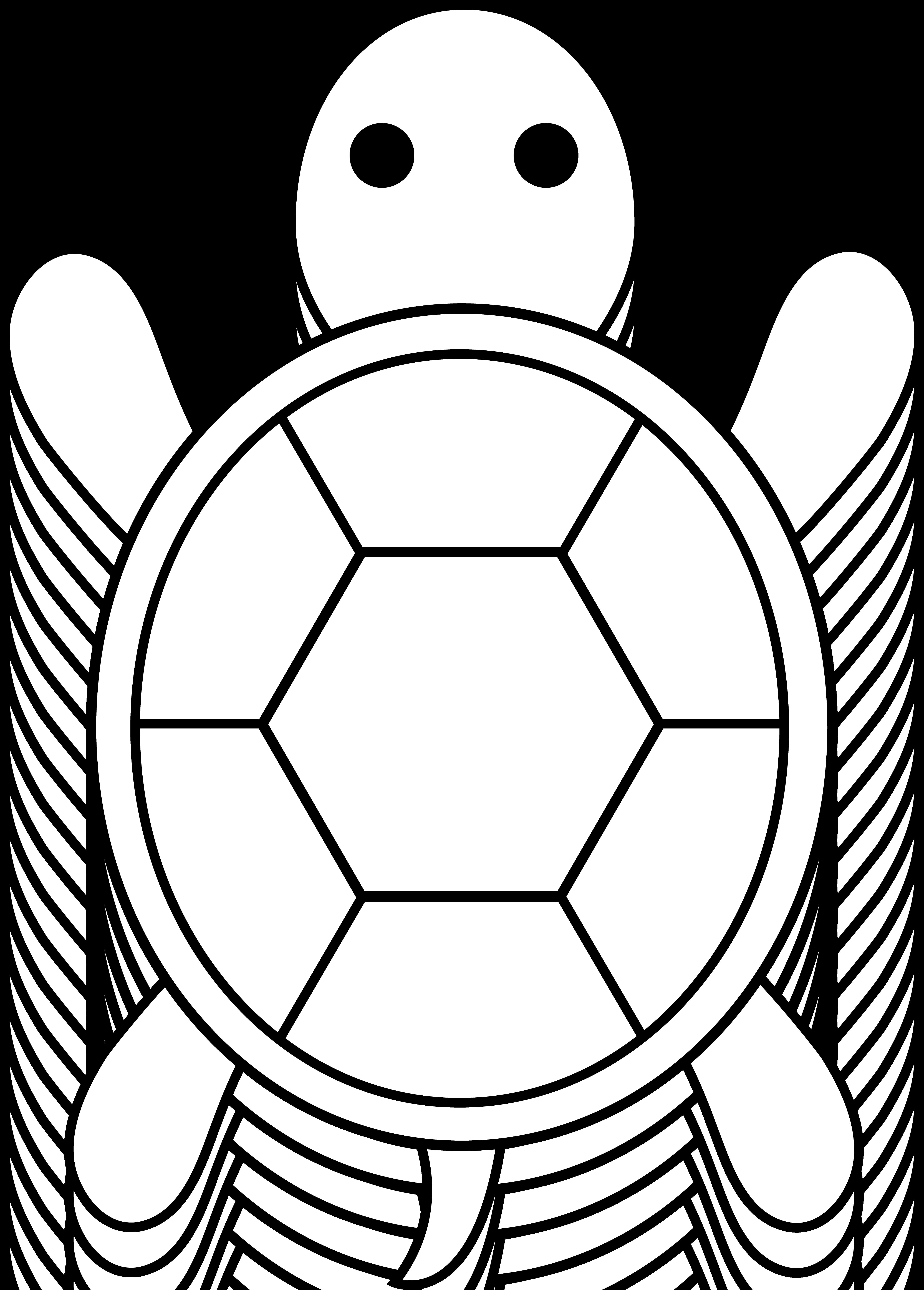 turtle coloring book ninja turtles coloring pages learn to coloring book coloring turtle