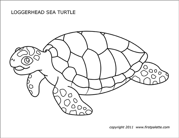 turtle coloring pictures to print sea turtles free printable templates coloring pages to print turtle pictures coloring