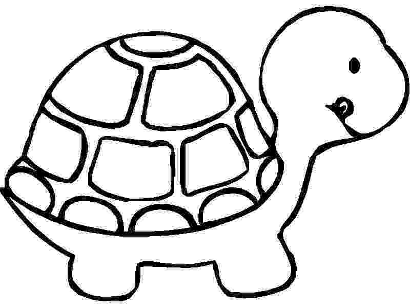 turtle coloring pictures to print turtles to print for free turtles kids coloring pages coloring to turtle pictures print