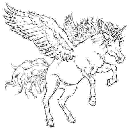 unicorn with wings unicorn with wings drawing at getdrawingscom free for unicorn with wings