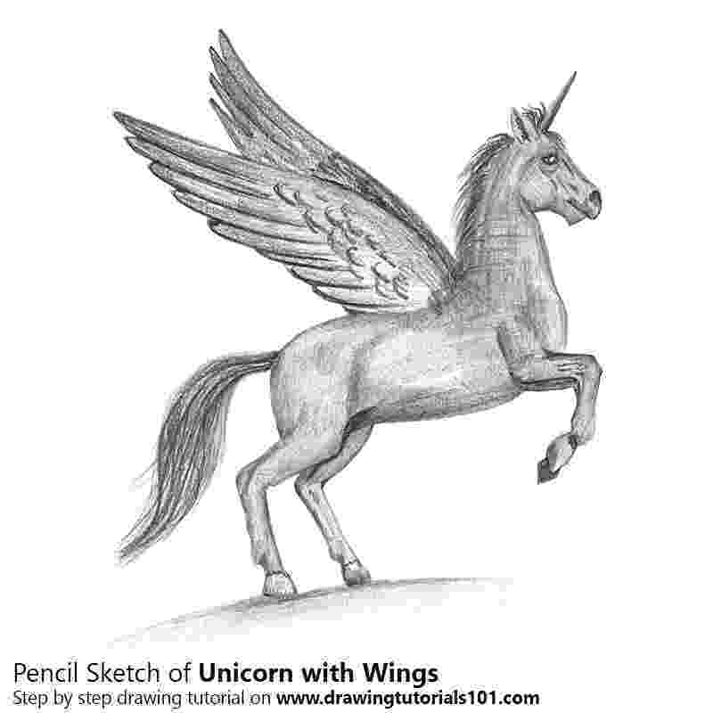 unicorn with wings unicorn with wings flying coloring pages coloring pages wings unicorn with