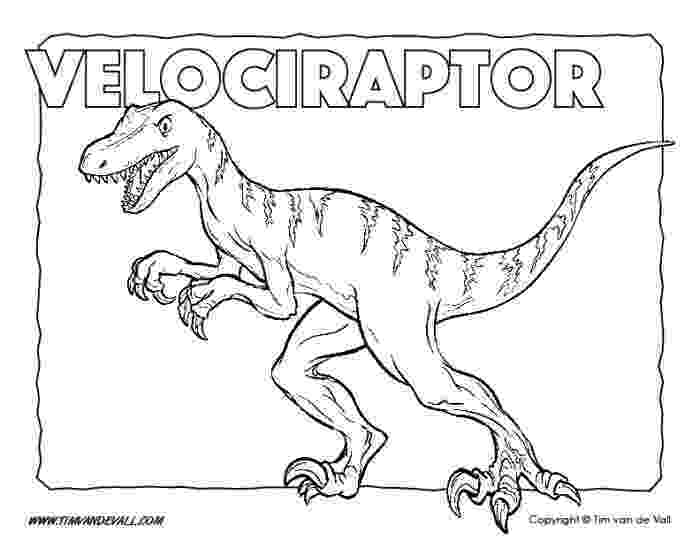 velociraptor coloring page free printable dinosaur coloring pages for kids tim39s page coloring velociraptor