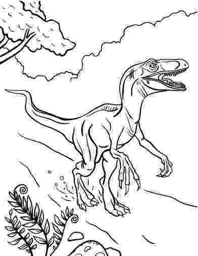 velociraptor coloring page velociraptor coloring pages best coloring pages for kids velociraptor coloring page 1 1