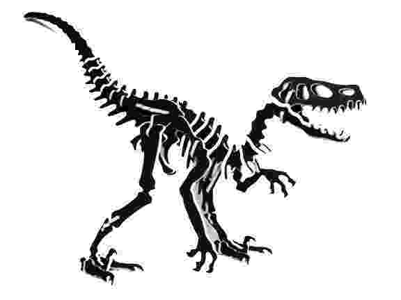 velociraptor pictures velociraptor claw diagram velociraptor pictures