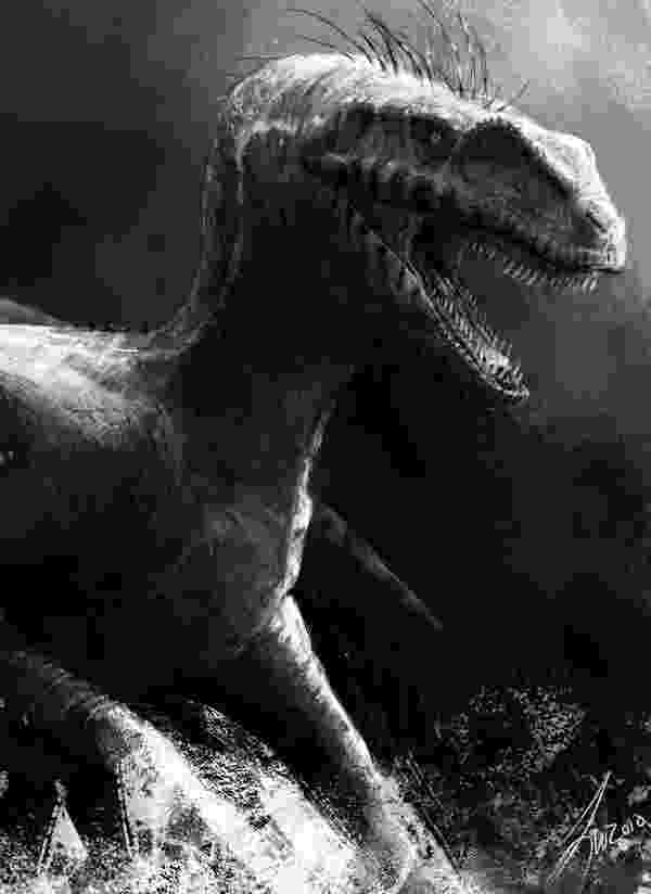 velociraptor pictures velociraptor color pages dinosaurs pinterest free velociraptor pictures