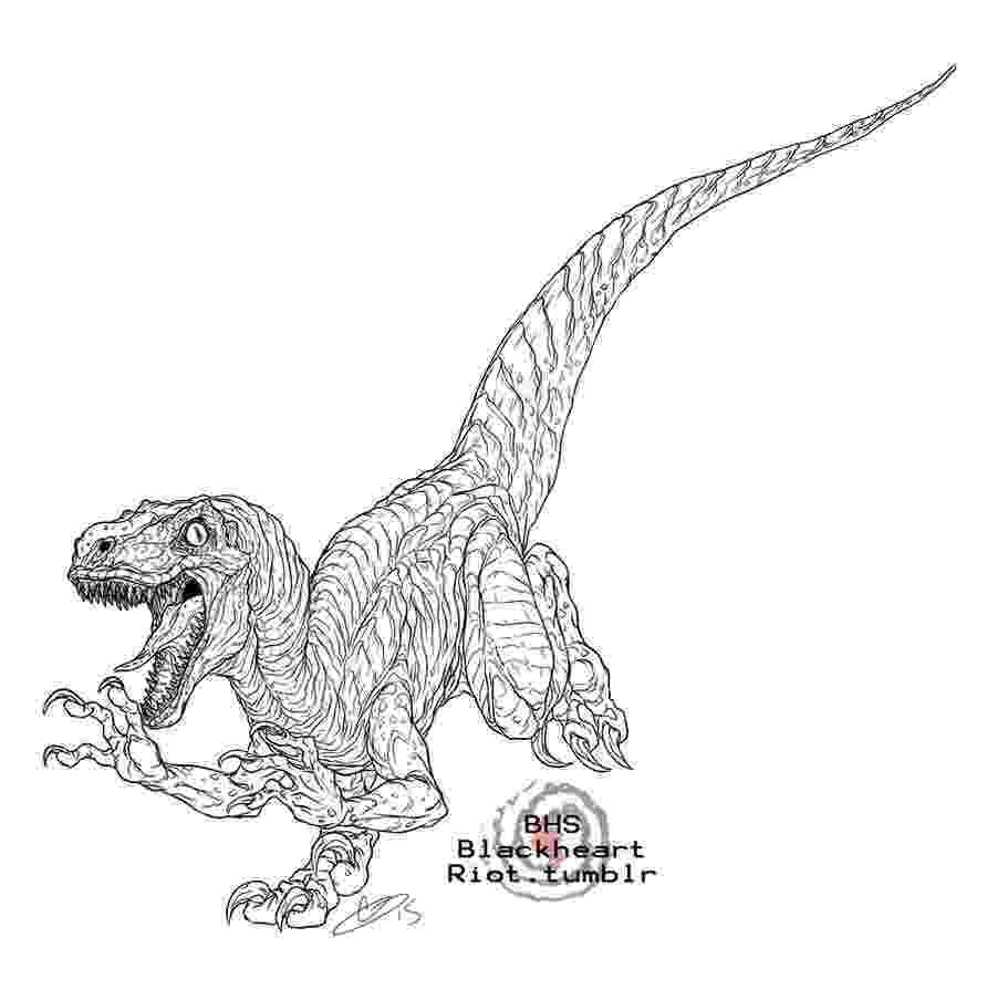 velociraptor pictures velociraptor coloring pages best coloring pages for kids velociraptor pictures 1 1