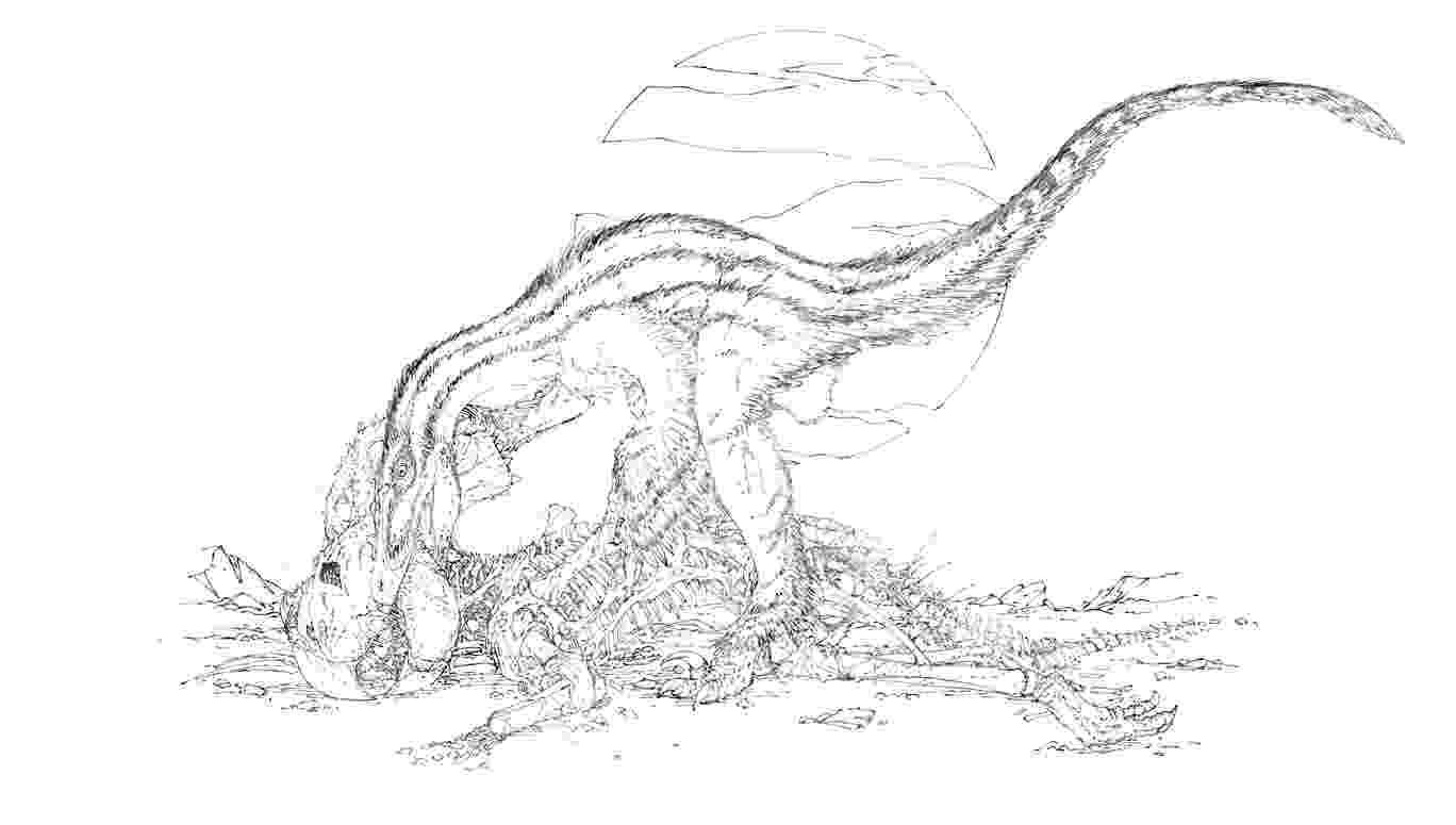 velociraptor pictures velociraptor coloring pages best coloring pages for kids velociraptor pictures 1 2
