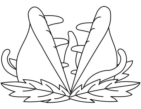 venus coloring page cool design venus fly trap coloring page free download page venus coloring