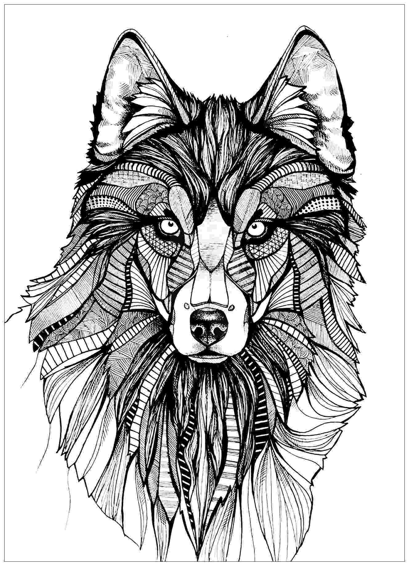 wolf colouring pages free printable wolf coloring pages for kids pages colouring wolf