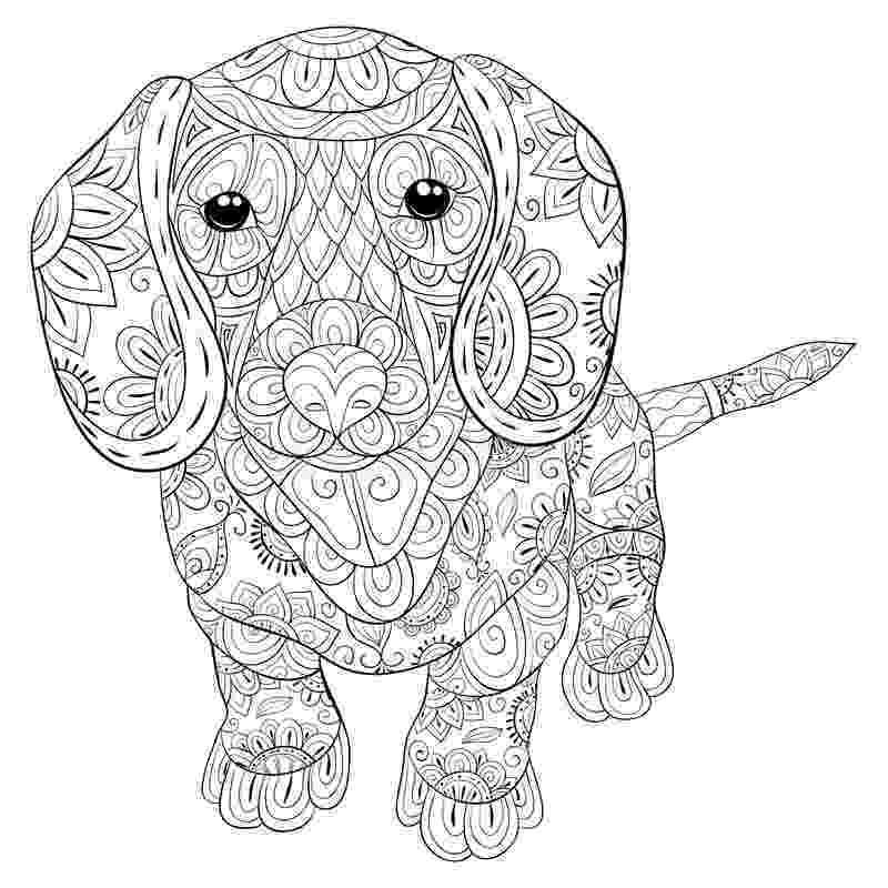 zen animal coloring book zen leopard animal art page to color zentangle animal animal book zen coloring
