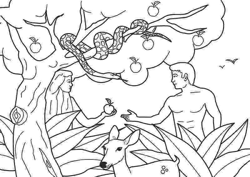 adam and eve coloring pages 為孩子們的著色頁 adam and eve coloring pages and adam coloring eve pages