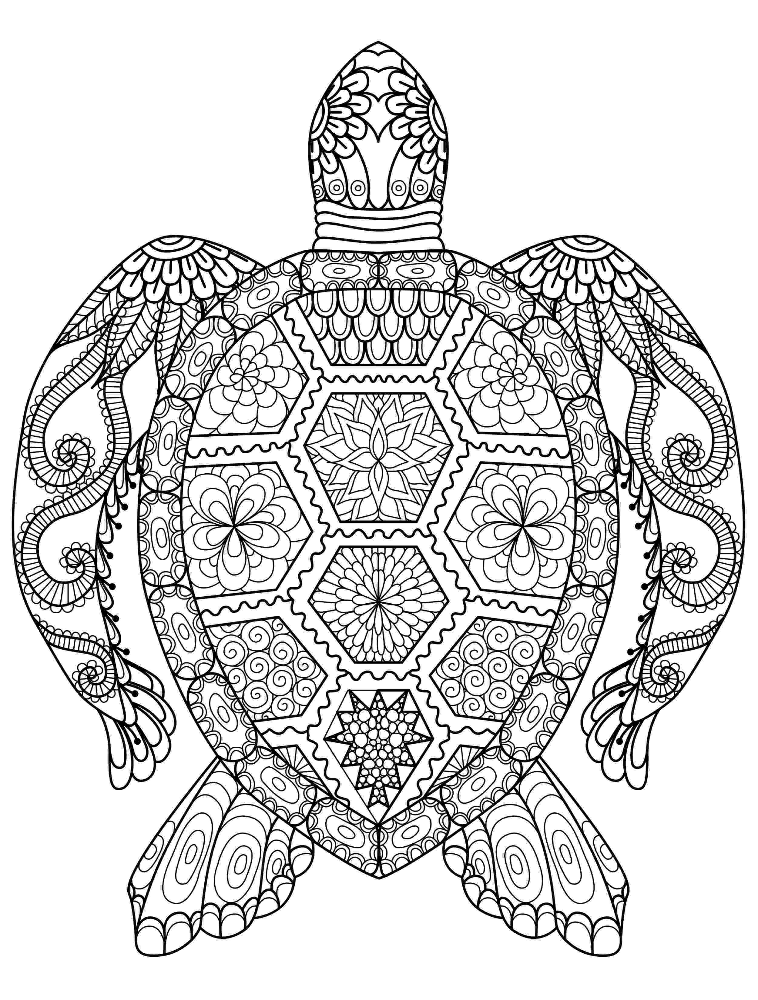 adult coloring pages animals adult coloring pages animals best coloring pages for kids adult pages coloring animals