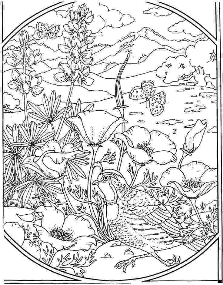advanced coloring sheets advanced coloring pages coloring pages to print sheets coloring advanced