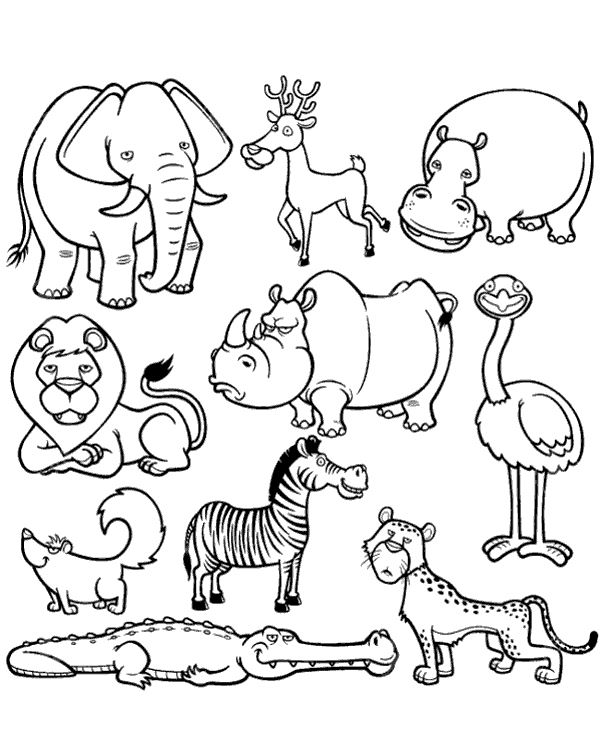 african animals coloring pages safari or african savanna animals free printable african pages coloring animals