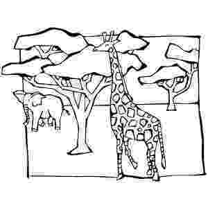 african savanna coloring pages african savanna coloring pages preschool coloring pages african coloring savanna pages