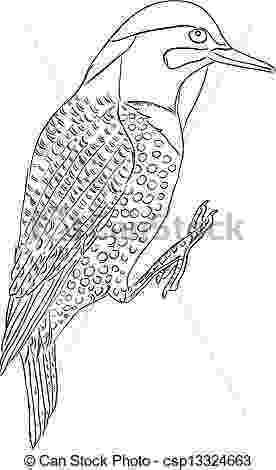 alabama state bird alabama state bird coloring page coloring home alabama state bird 1 3