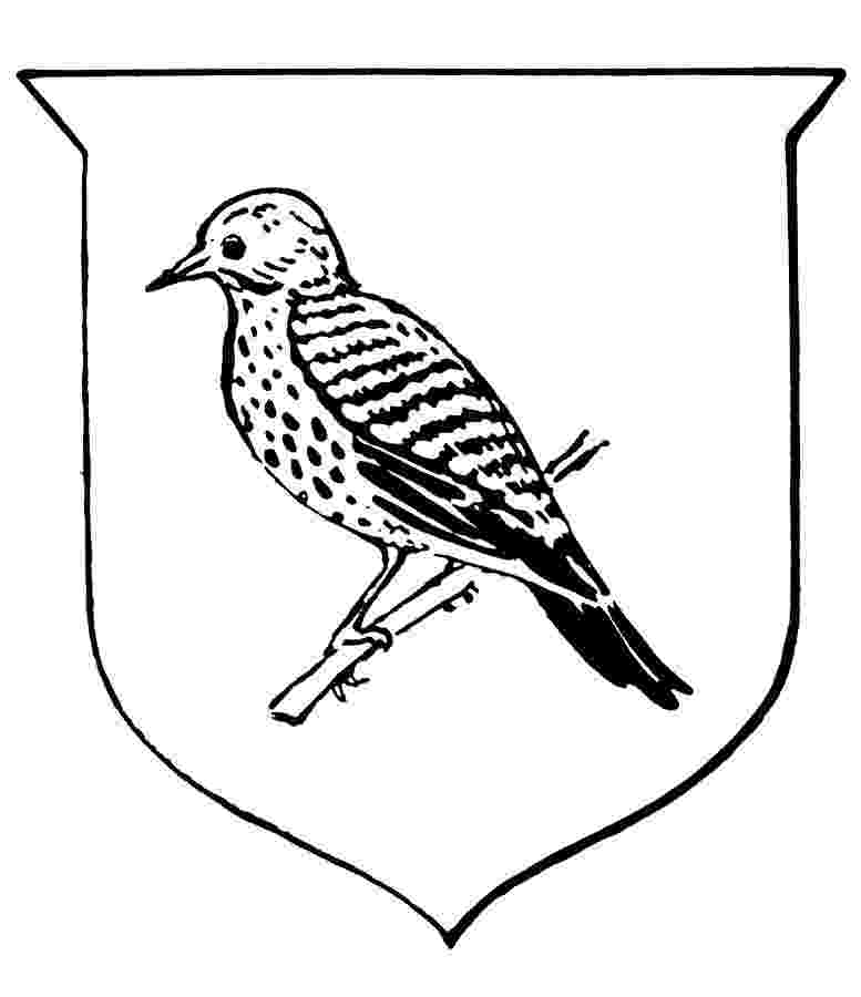 alabama state bird alabama state bird coloring page coloring home bird alabama state