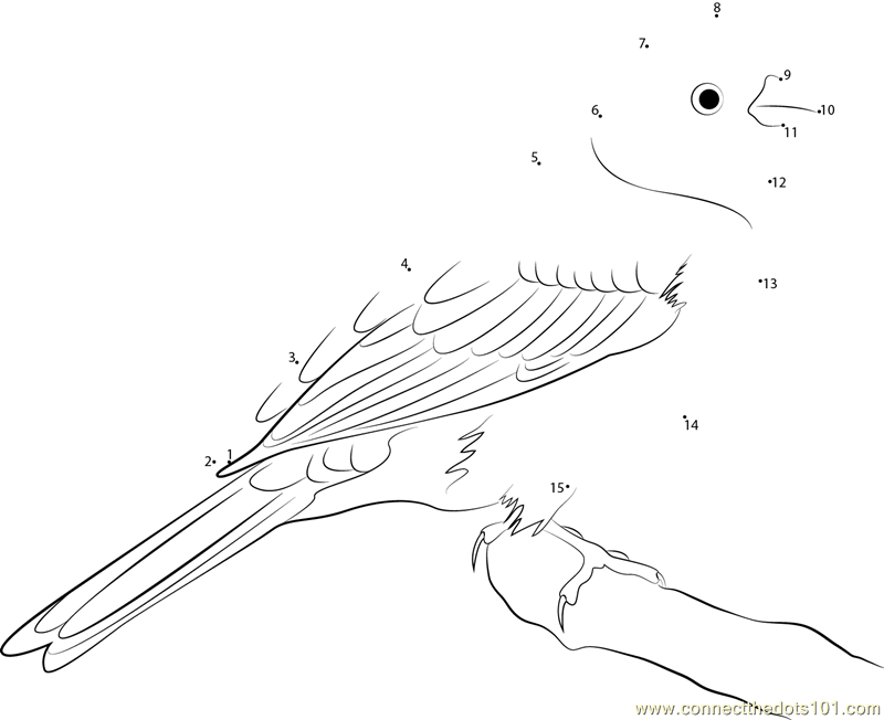 alabama state bird alabama state seal download free alabama state seal for state bird alabama