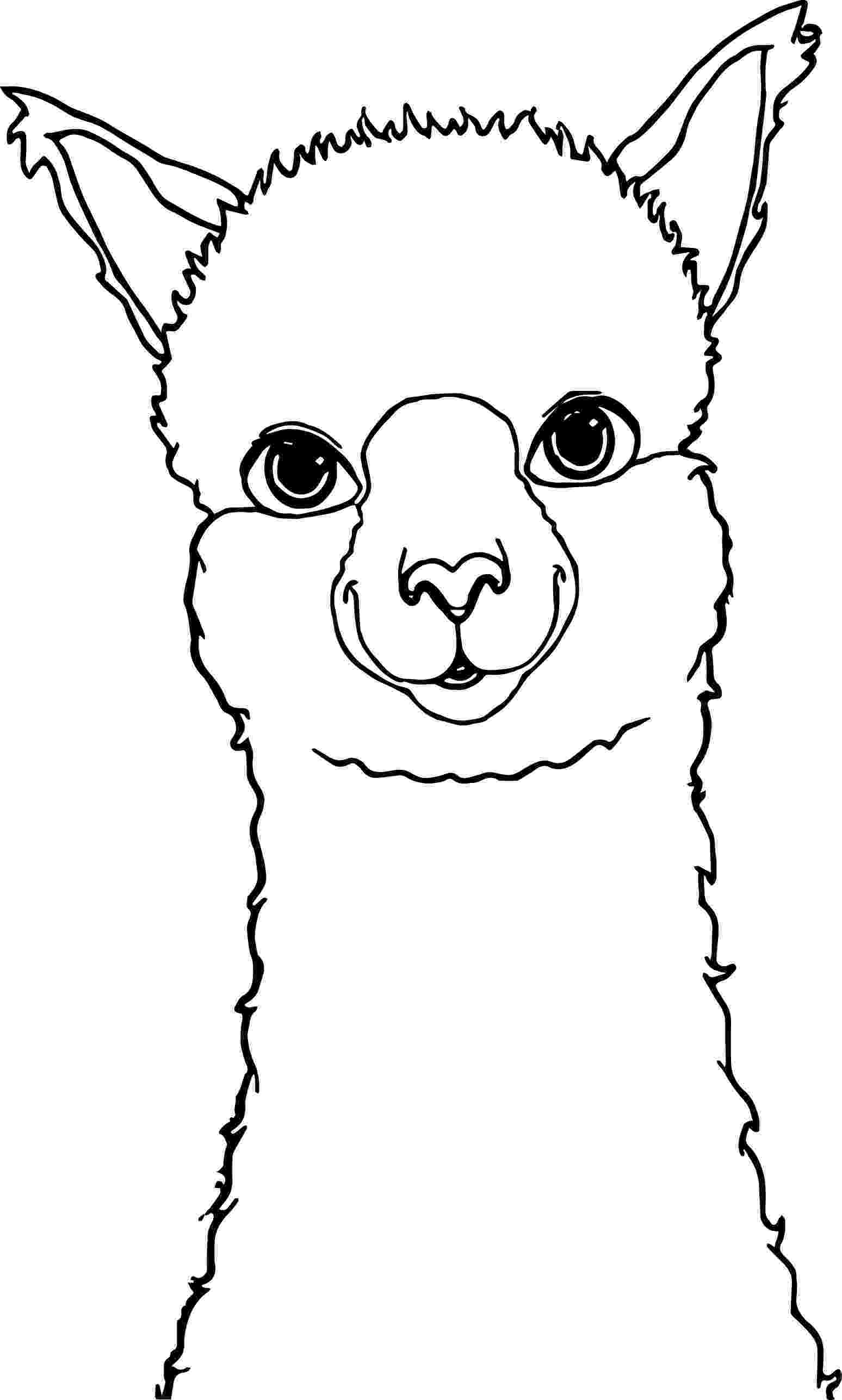 alpaca coloring pages cartoon alpaca coloring page wecoloringpagecom coloring alpaca pages