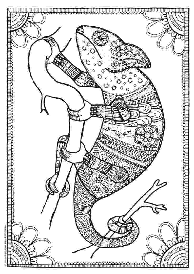 amphibian coloring pages cartoon frog coloring page free printable coloring pages pages amphibian coloring