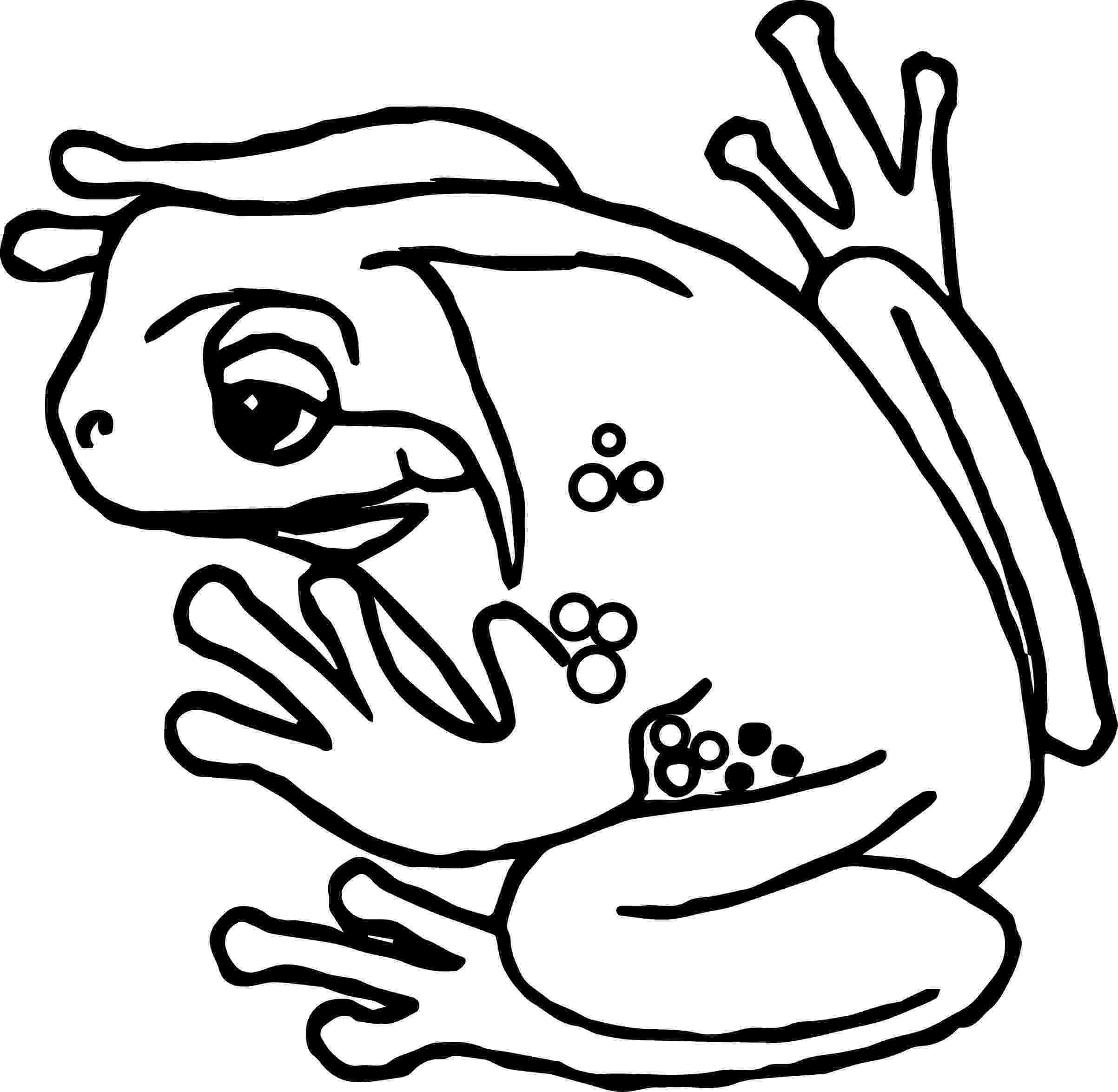 amphibian coloring pages frog holding flower coloring page free printable pages coloring amphibian