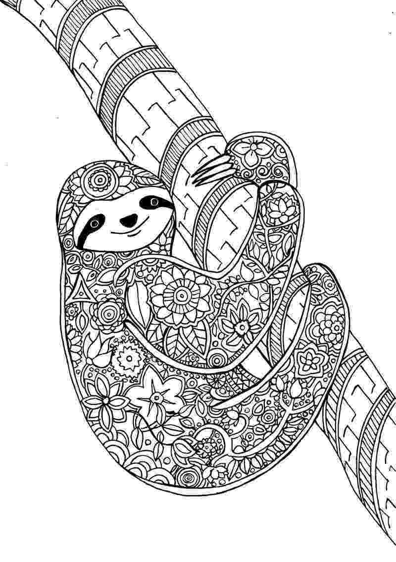 animal coloring book for adults adult coloring pages animals best coloring pages for kids adults coloring animal for book 1 1