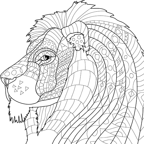 animal coloring book for adults animal coloring pages for adults best coloring pages for adults for coloring animal book