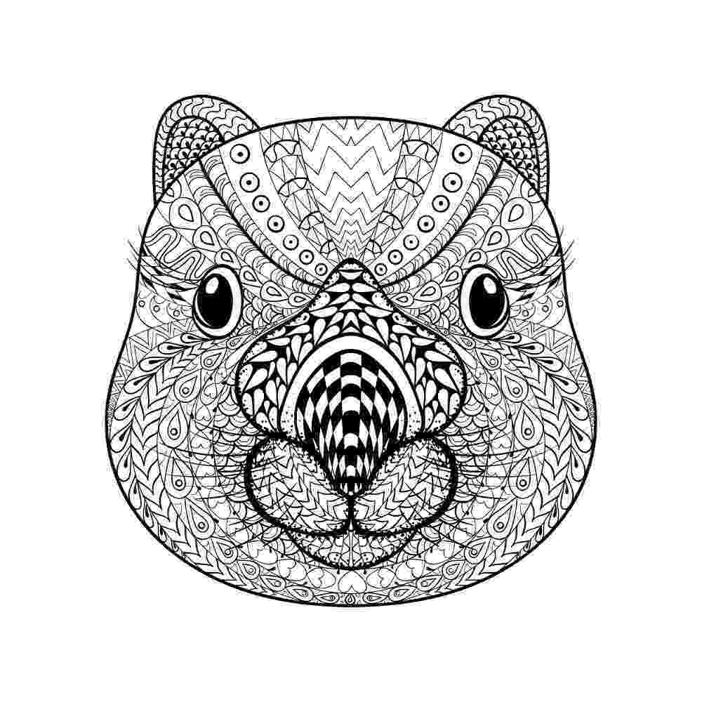 animal coloring book for adults animal coloring pages for adults best coloring pages for coloring for animal book adults