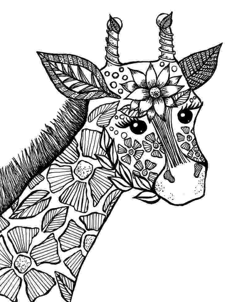 animal coloring book for adults giraffe adult coloring book page drawings i39ve made adults book coloring for animal