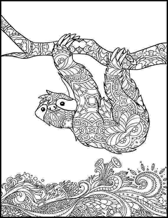 animal coloring book for adults printable coloring page adult coloring page animal coloring for adults book animal