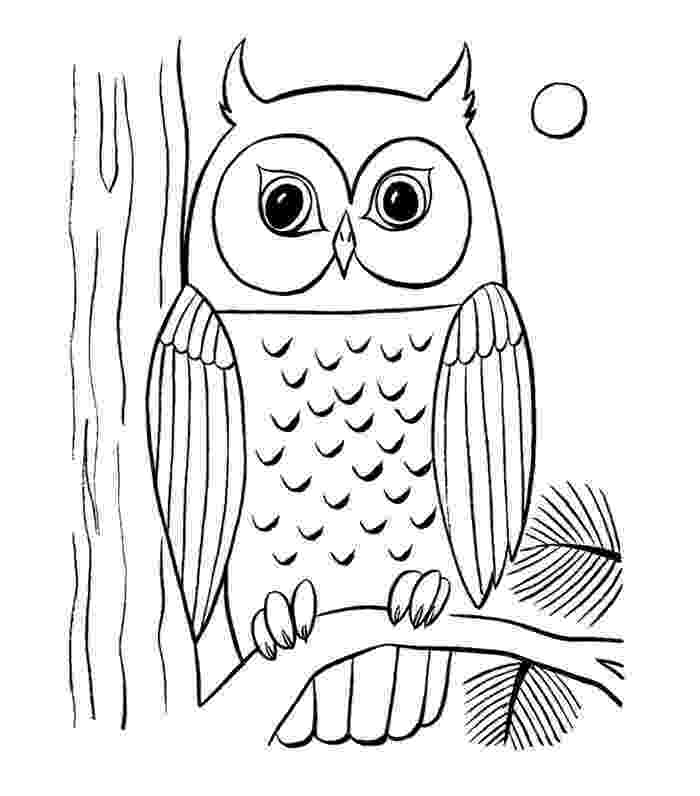 animal colouring pages for older children animal coloring pages for older children at getdrawings colouring children pages for animal older
