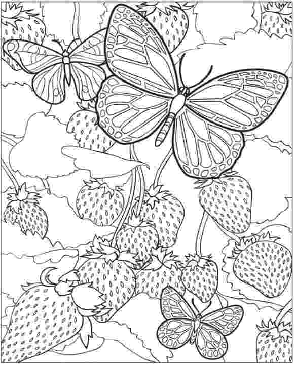 animal colouring pages for older children free printable coloring pages for adults 12 more designs for children colouring pages animal older