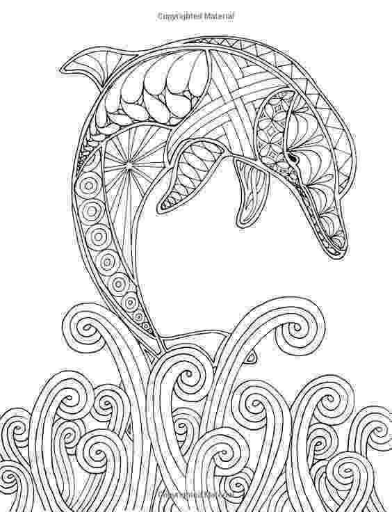animal kingdom coloring book whale millie marotta39s animal kingdom sampler coloring book whale book animal coloring kingdom