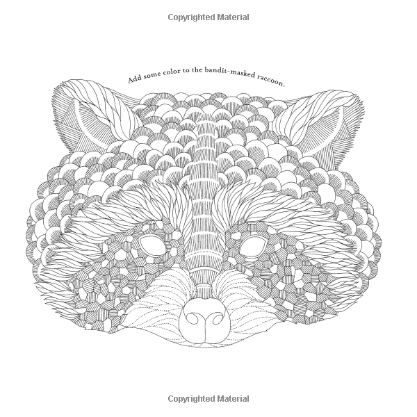 animal kingdom colouring book peacock peacocks coloring pages for adults animal peacock colouring kingdom book