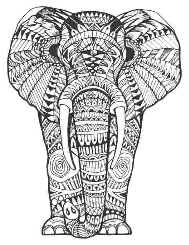 animal patterns colouring pages 159 best elephant coloring pages for adults images on animal colouring pages patterns
