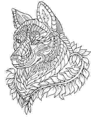 animal patterns colouring pages 163 best images about color me on pinterest dovers pages colouring patterns animal