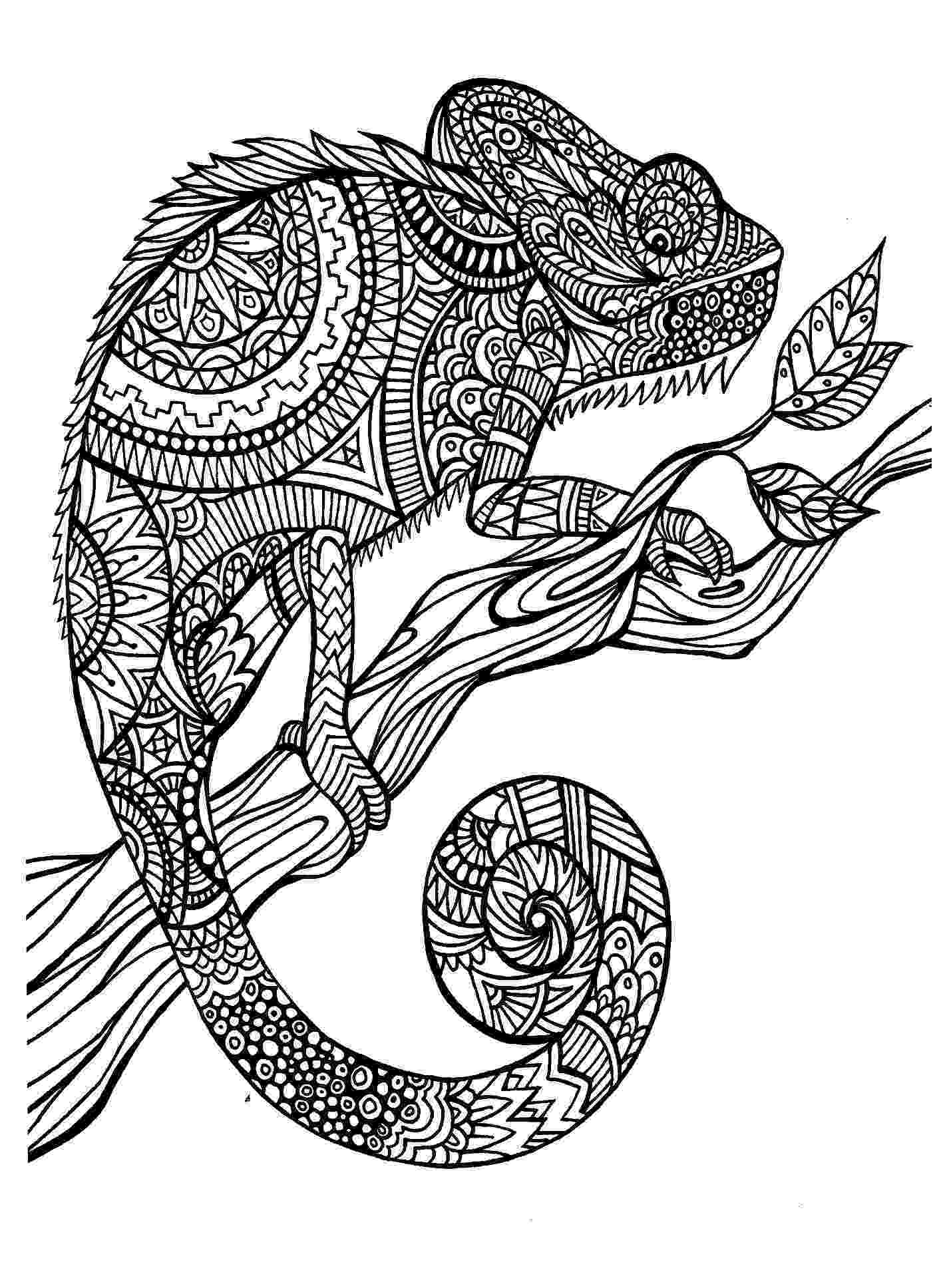 animal patterns colouring pages 63 adult coloring pages to nourish your mental visual pages animal patterns colouring