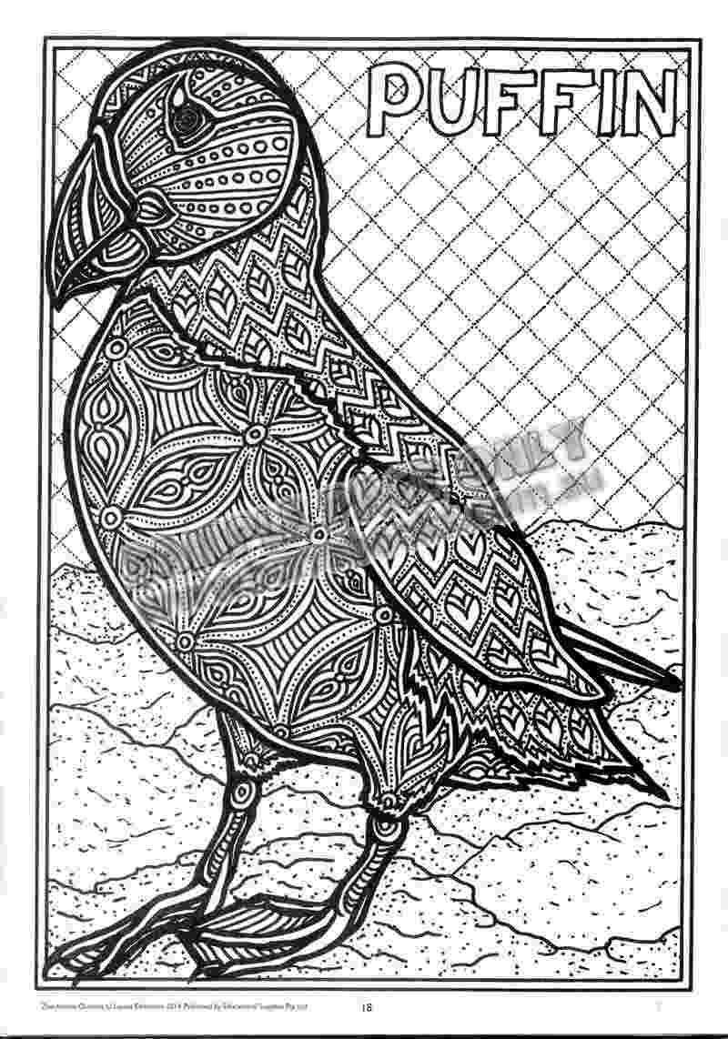 animal patterns colouring pages cameleon patterns animals coloring pages for adults pages patterns colouring animal