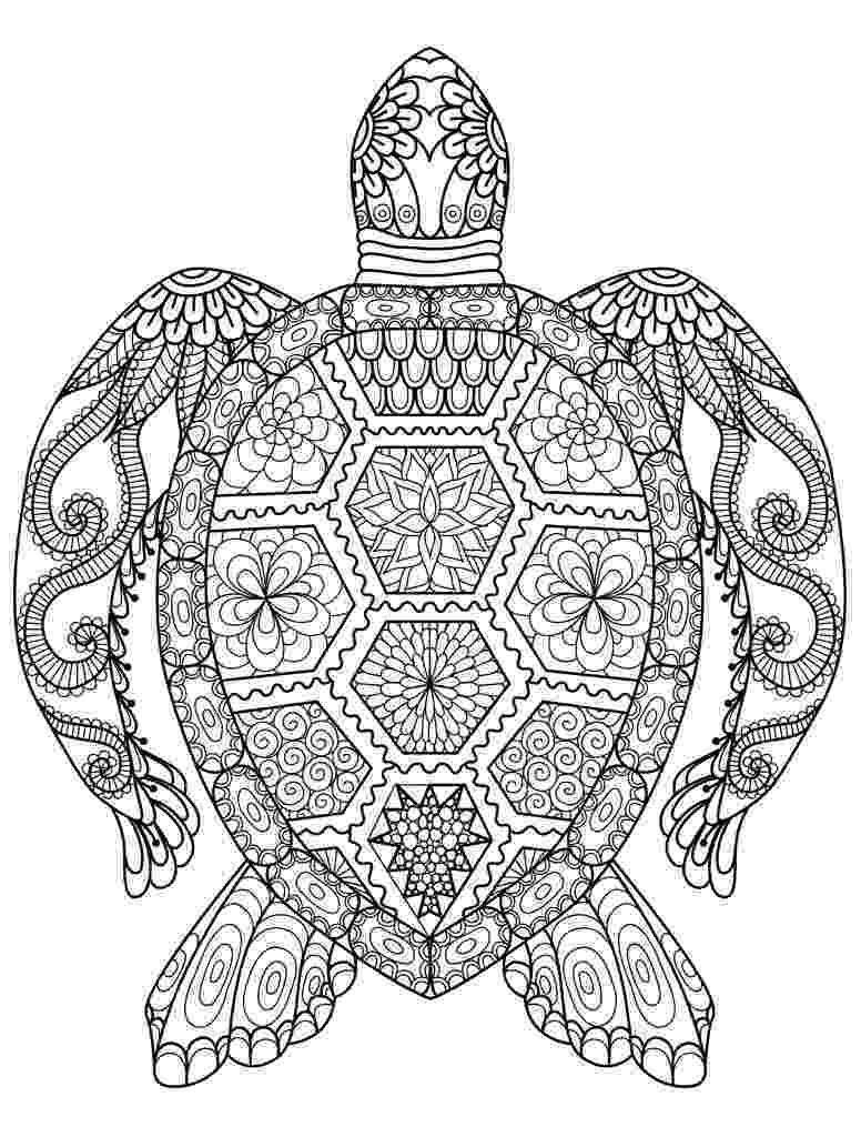 animal pictures coloring pages fox coloring pages animal coloring pages fox coloring animal pages pictures coloring