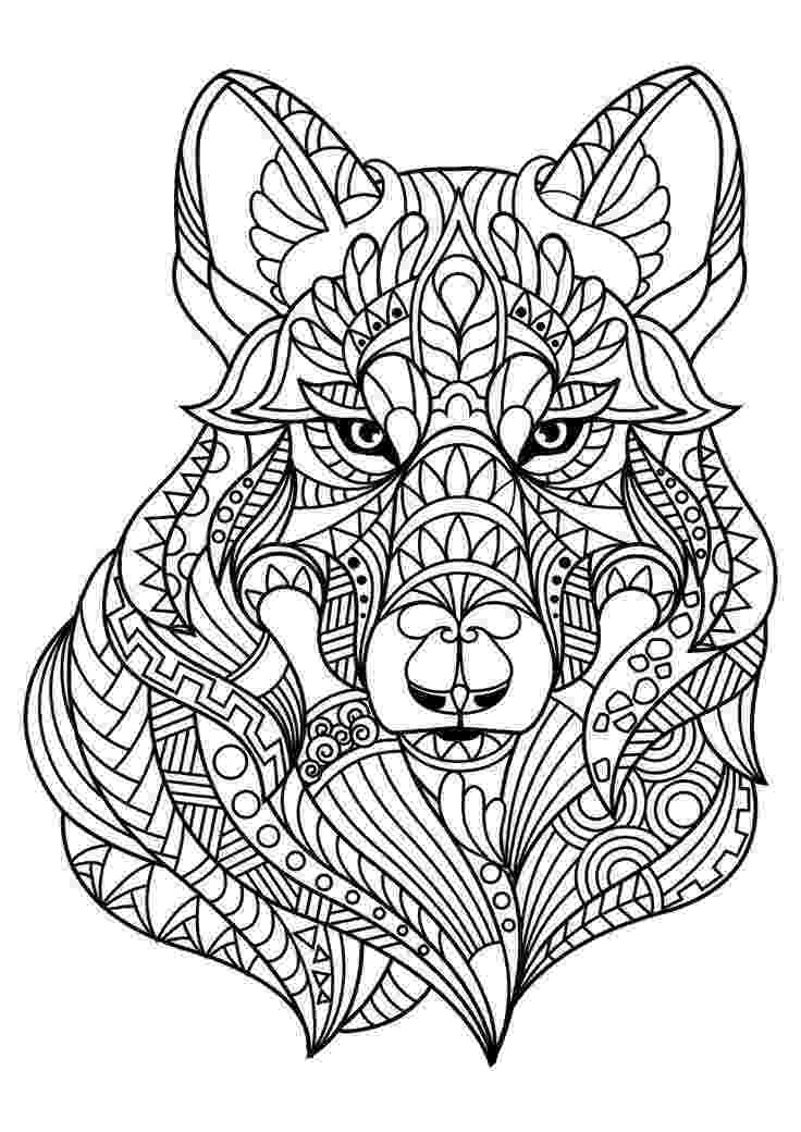 animals coloring book pages awesome baby jungle free animal coloring page animal book pages animals coloring