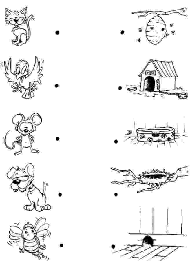 animals coloring worksheets for kindergarten animal game preschool science activities farm animal worksheets kindergarten coloring animals for