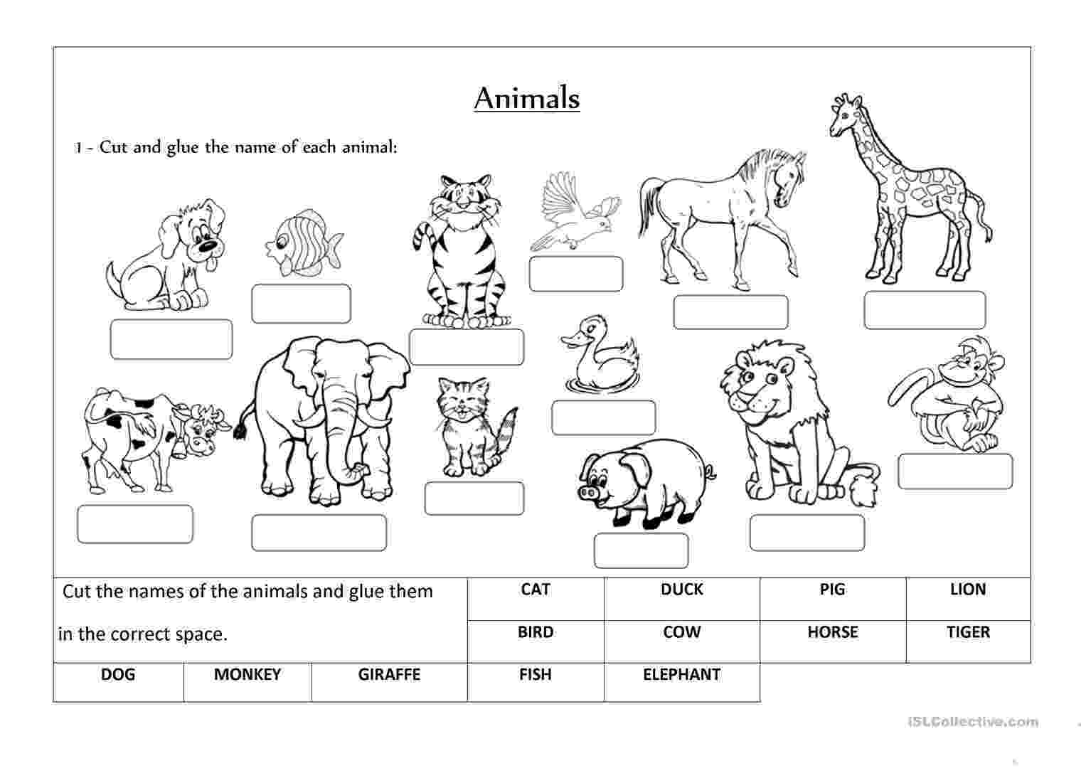 animals coloring worksheets for kindergarten animals label and classify english esl worksheets for for coloring kindergarten animals worksheets