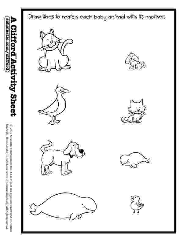 animals coloring worksheets for kindergarten baby animals match activity sheet worksheets for kids animals kindergarten worksheets for coloring
