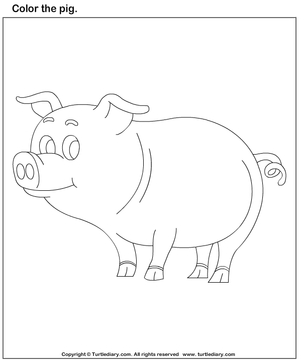 animals coloring worksheets for kindergarten color the pig worksheet turtle diary animals for worksheets kindergarten coloring