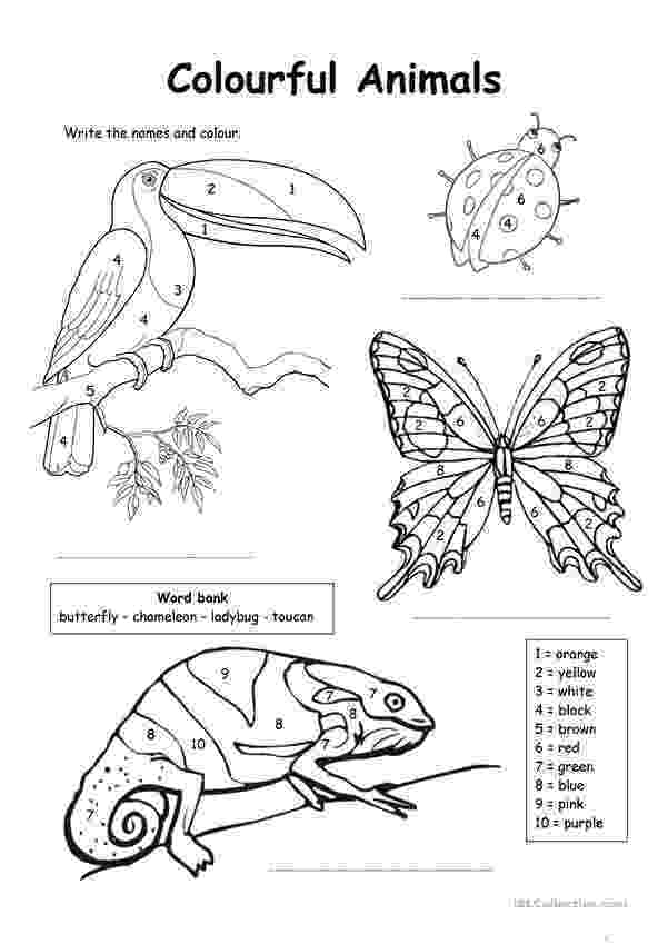 animals coloring worksheets for kindergarten colour by numbers colourful animals worksheet free esl coloring kindergarten animals worksheets for