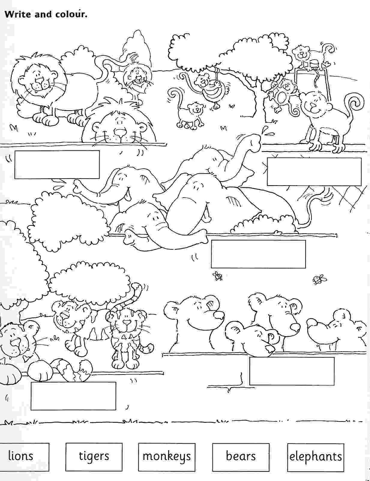 animals coloring worksheets for kindergarten new 826 zoo animals worksheets printable zoo worksheet animals worksheets for coloring kindergarten