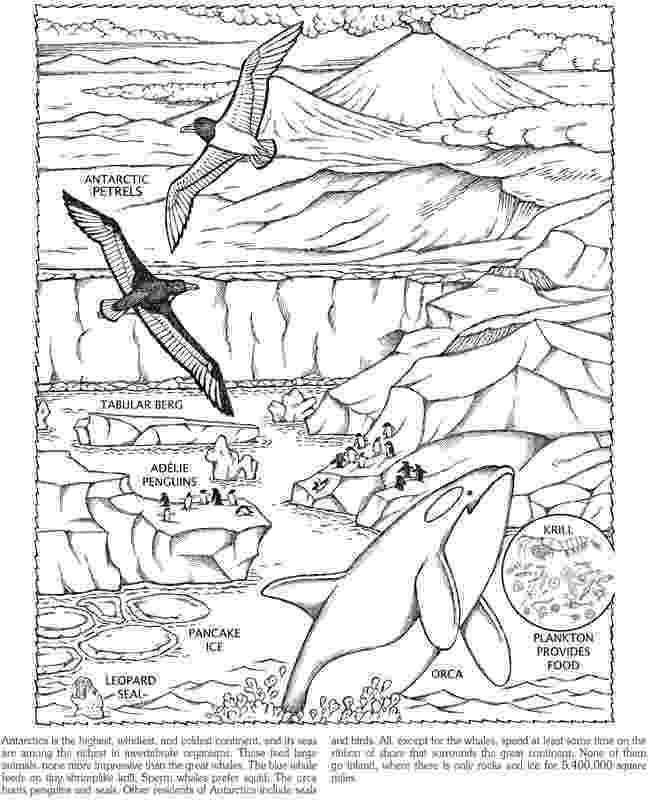 antarctica coloring pages antarctica free coloring pages pages coloring antarctica
