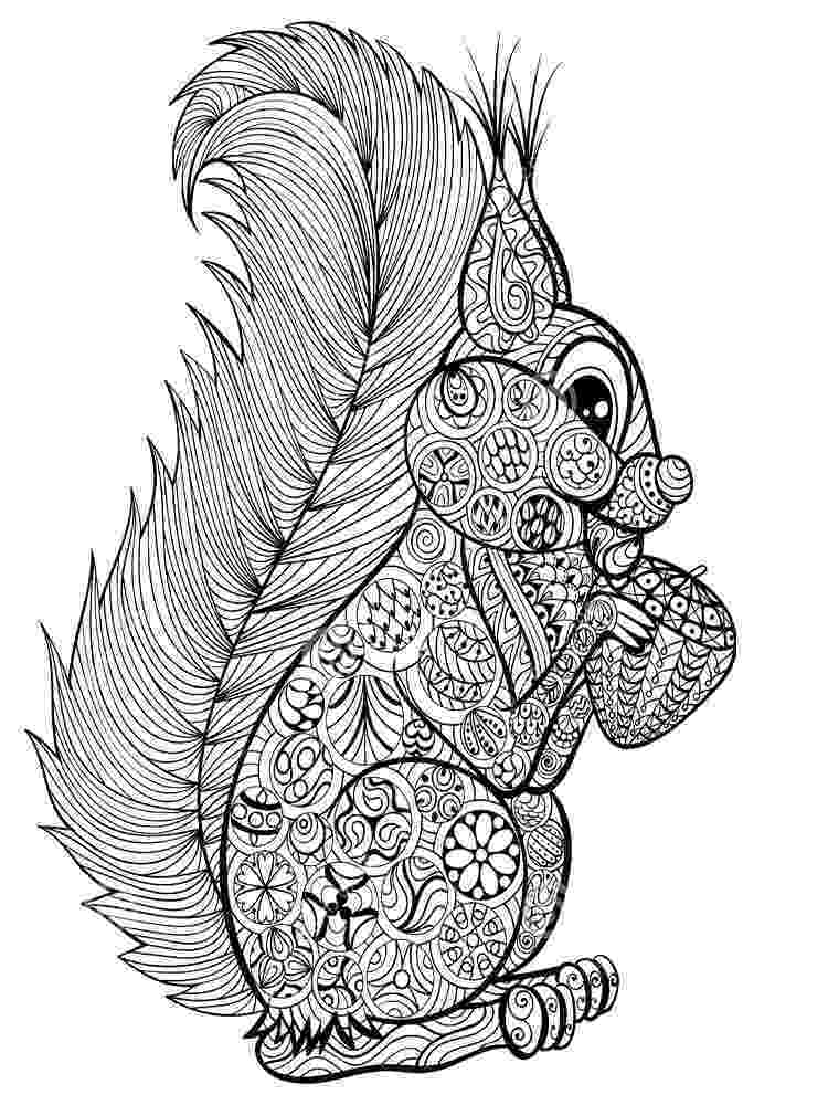 anti stress coloring book animals vector ornamental wolf with dreamcatcher ethnic animals book coloring stress anti