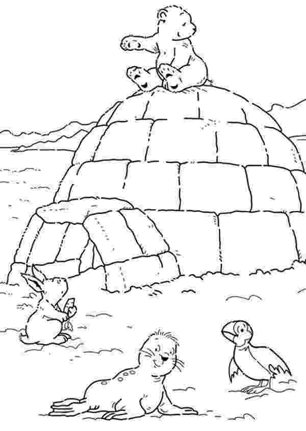 arctic animals coloring pages for preschoolers arctic animals song for children preschoolers pages coloring animals arctic for